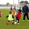 Ecole de foot : pas d'entraînement pour les U6 à U8