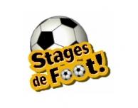 Stage ETE 2019